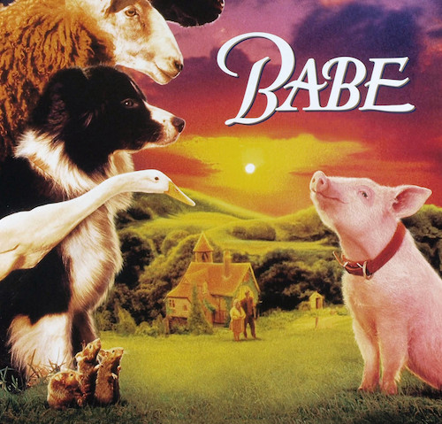 Babe, en iyi film, en iyi yardımcı erkek oyuncu, en iyi yönetmen dallarında Oskar adaylığı olup nefis efektleri ile Oskar'ı kazanan, asla basit bir çocuk filmi değil.. Filmin yapımcısı ve senaristi George Miller'ın hayalindeki sahneleri yaratacak görsel efekt teknolojisinin gelişmesi için on yıl projeyi askıya aldığı söylenir.