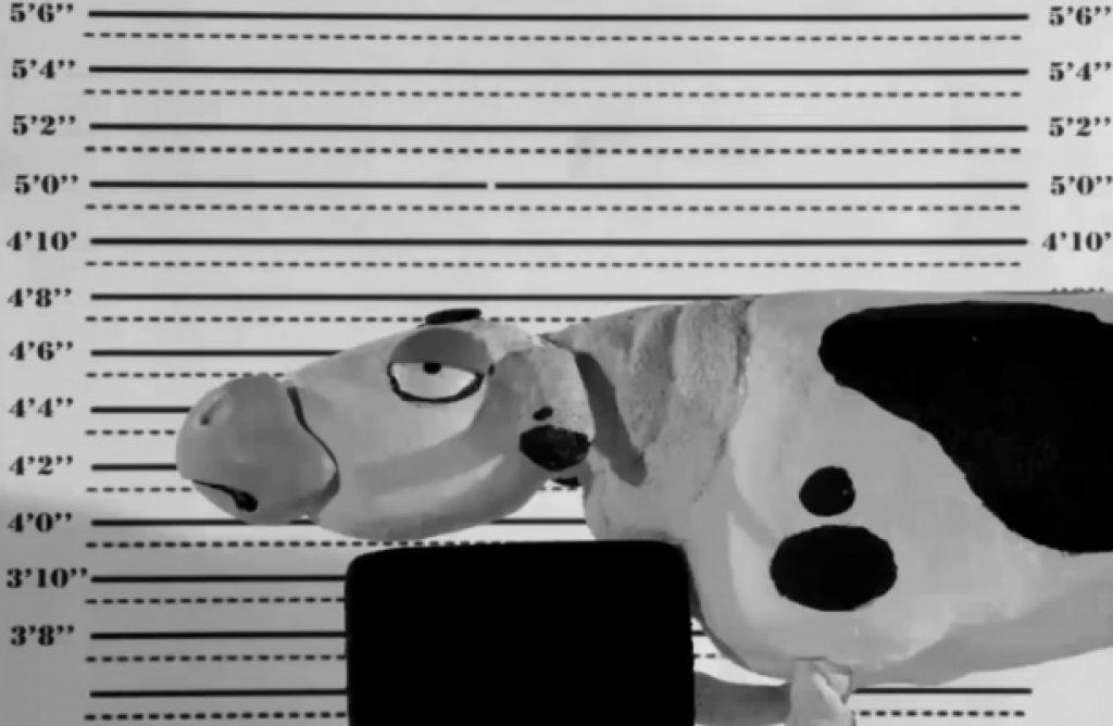 animasyon belgeseli